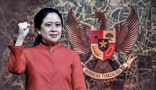 Kubu Banteng vs Celeng Panas! Pengamat Sampai Wanti-Wanti PDIP Harus....