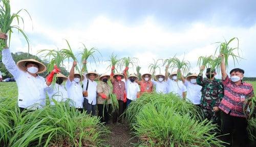 Lagi, OJK Kembali Resmikan KUR Klaster Pertanian di Daerah