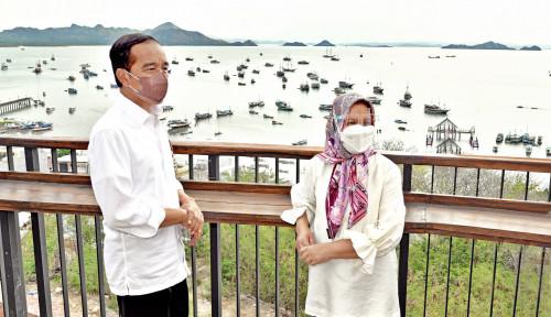 Corona Mulai 'Jinak', Presiden Jokowi Kembali Aktif Keliling Indonesia