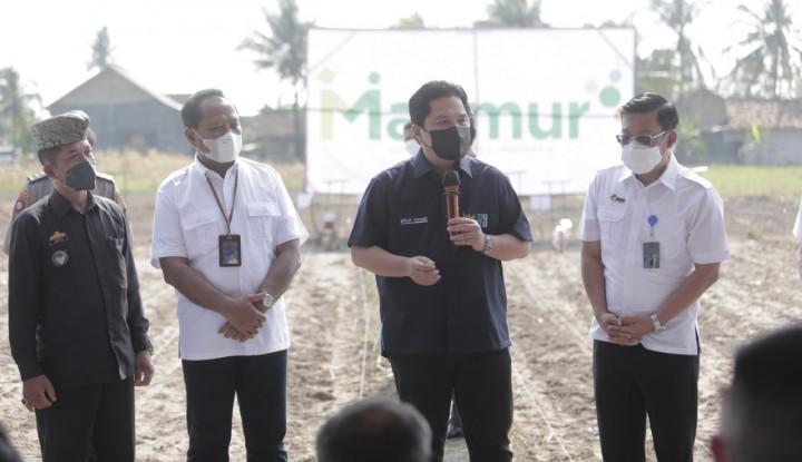 Erick Thohir Pastikan Petani Lampung Dapat Pendampingan dari Program Makmur Pupuk Indonesia