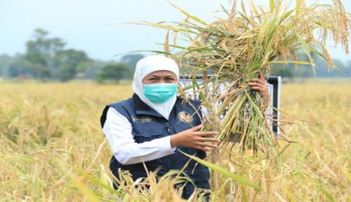 Khofifah Ingatkan RI Produsen Limbah Makanan Terbesar Kedua Dunia