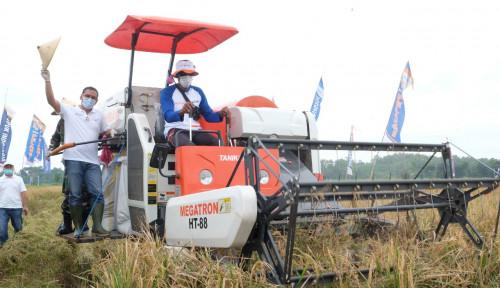 Program Makmur Pupuk Kaltim Dorong Produktivitas Pertanian Hingga 145 Persen