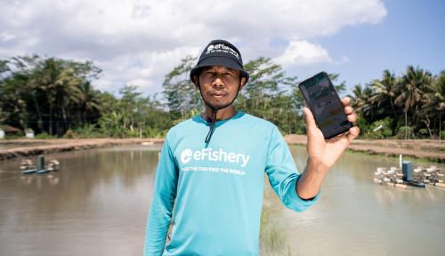 Jaga Ketahanan Pangan Indonesia, Pembudidaya Ikan dan eFishery Terus Tumbuh Bersama
