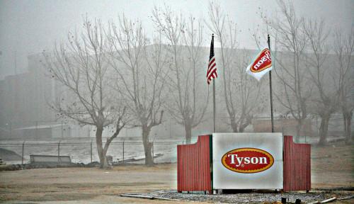Kisah Perusahaan Raksasa: Awalnya Menjual 50 Ayam, Tyson Foods Kini Produsen Daging Terbesar Kedua