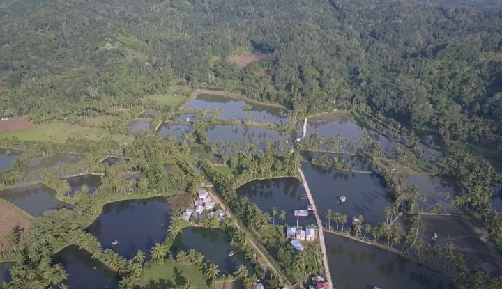Momentum HUT ke- 22, KKP Canangkan Kabupaten Pasaman sebagai Kampung Perikanan Budidaya Ikan Mas